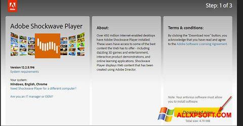 Screenshot Adobe Shockwave Player untuk Windows XP
