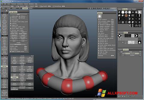 Screenshot 3D-Coat untuk Windows XP