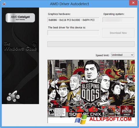 Screenshot AMD Driver Autodetect untuk Windows XP