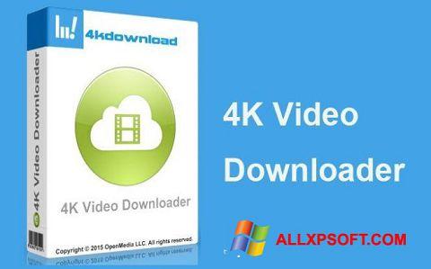 Screenshot 4K Video Downloader untuk Windows XP