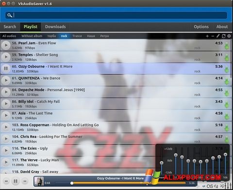 Screenshot VkAudioSaver untuk Windows XP