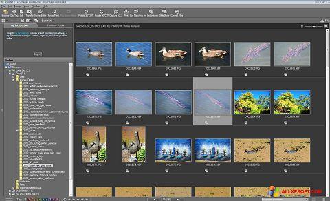 Screenshot ViewNX untuk Windows XP