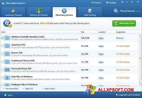 Screenshot Wise Disk Cleaner untuk Windows XP