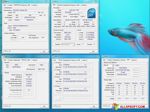 Screenshot CPU-Z untuk Windows XP